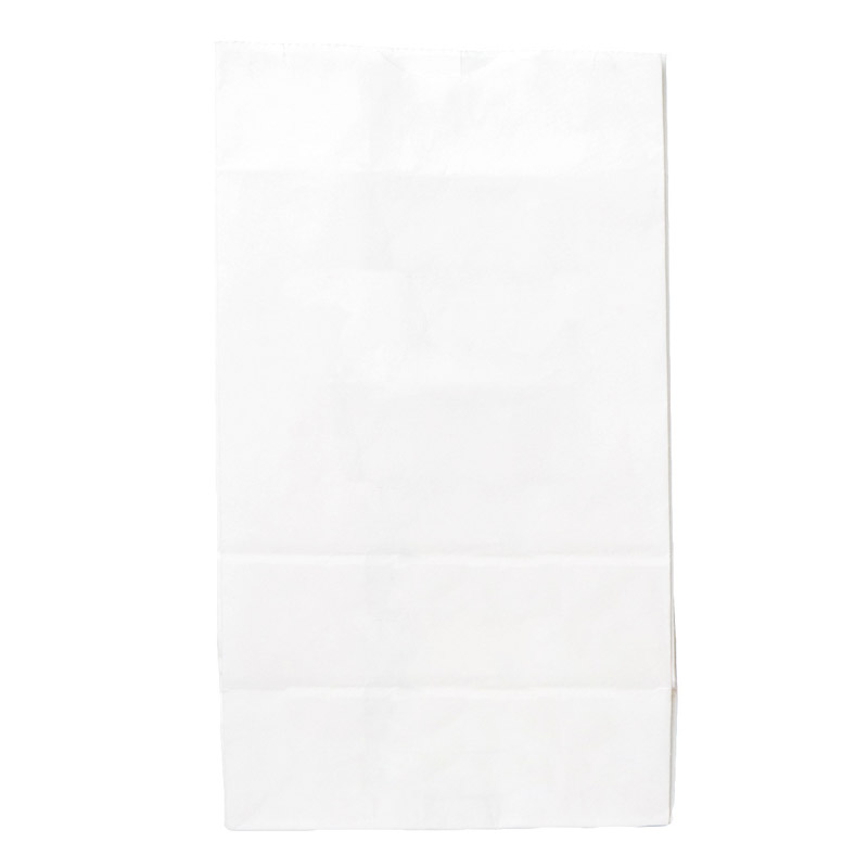 "Large Rx Paper Exit Bags   (2000 qty) - $109.99 ($0.06/unit)  Blank White, Generic Pharmacy, 5.71"" x 3.62"" x 10.63"""