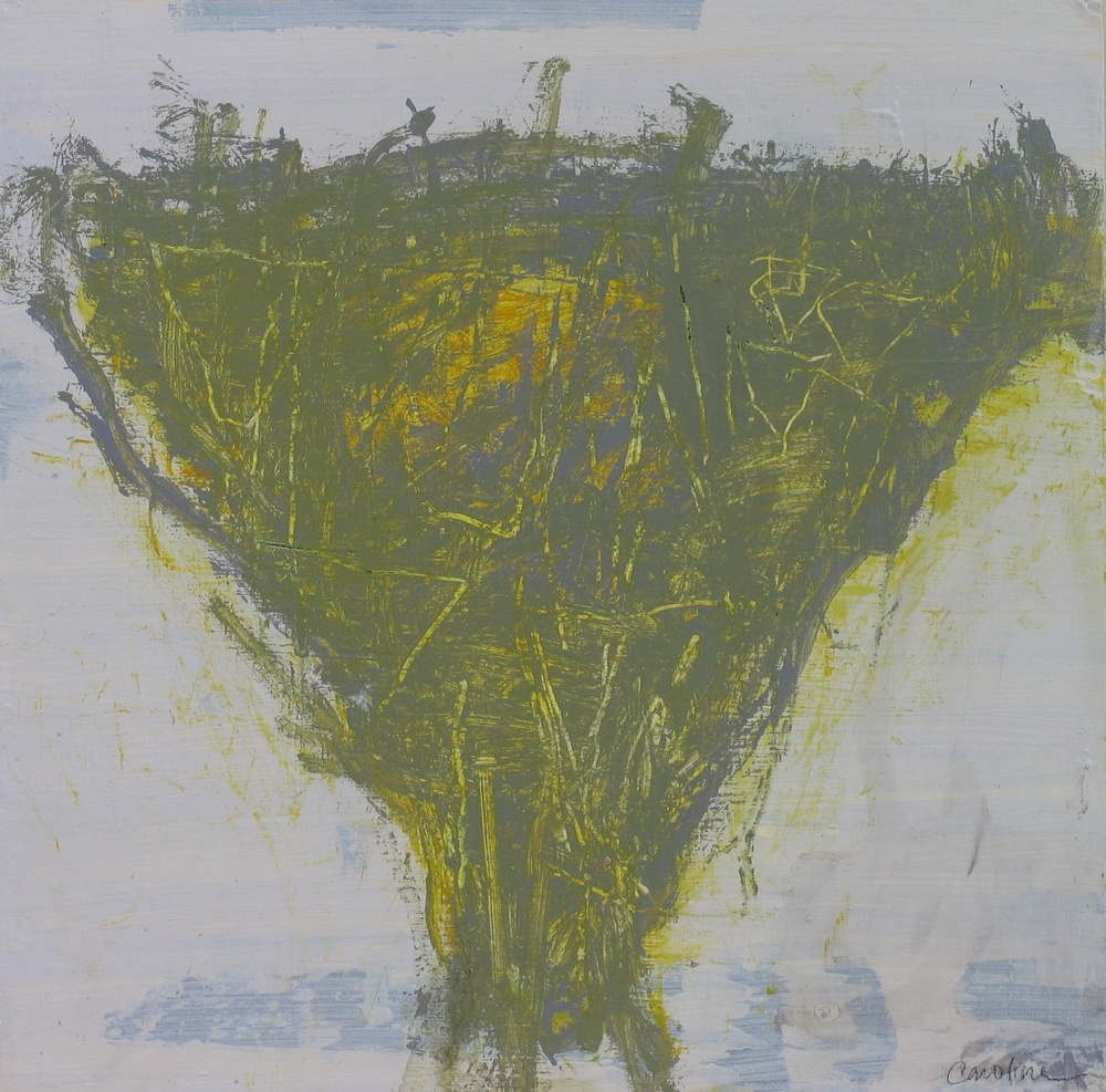 Acacia #2