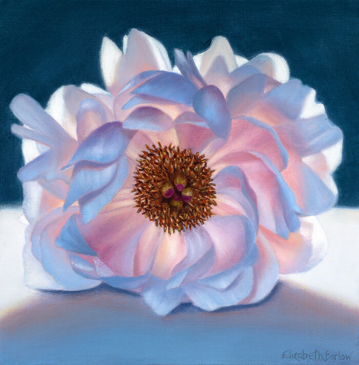 A Peony for Manet