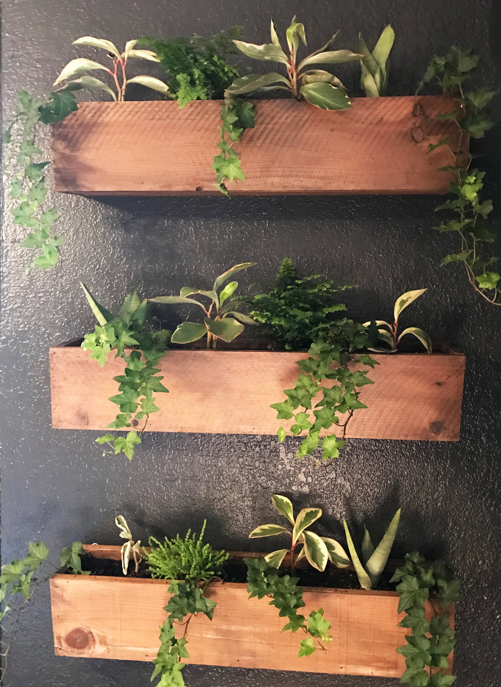 DIY living wall. I love how the plants make this small bedroom feel so relaxing.