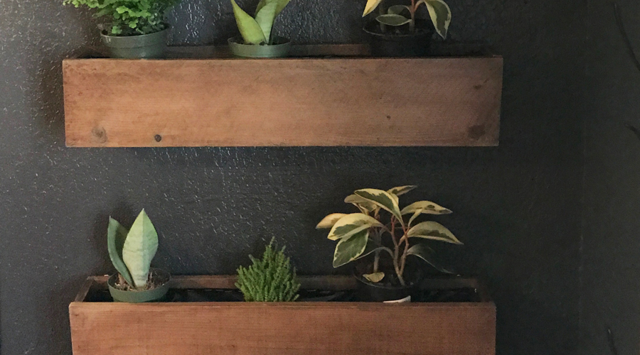 Living wall DIY | step by step | directions | instructions | reclaimed fence boards | reclaimed barnwood | reclaimed wood project