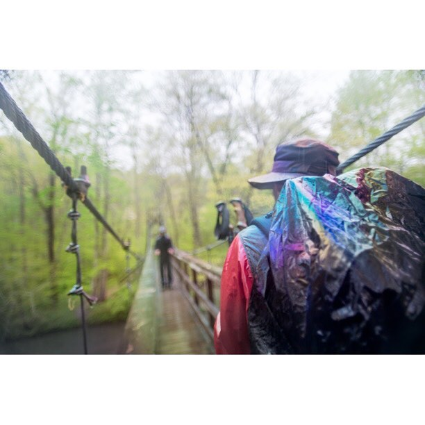 New image from @thethruproject book! -- In Passing ll. Virginia. The Appalachian Trail 2013 -- More from The Thru Project Book @ www.thru-at.com #thethruproject #thethruprojectbook #appalachaintrail #thruhike #joshuaniven #thewandertrees #virginia #whiteblaze