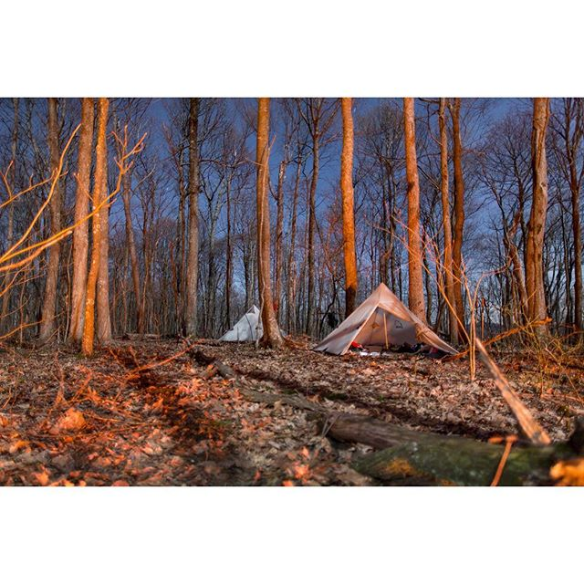 "New Image from The Thru Project Book! -- Locust l. Virginia, The Appalachian Trail -- Head over to www.thru-at.com to check out The Thru Project Book.  Book package includes: - First Release Book (#'d & Signed) - 2 Limited Edition 8"" x 10"" Prints - Free (US) Shipping! ⚡️⚡️⚡️ #thethruproject #thethruprojectbook #appalachaintrail #thruhike #joshuanivenstudios #thewandertrees #locustknob #virginia"