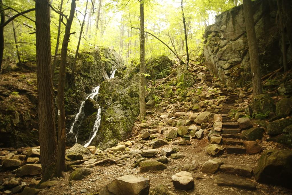 Fitzgerald Falls, NY (1371.5)