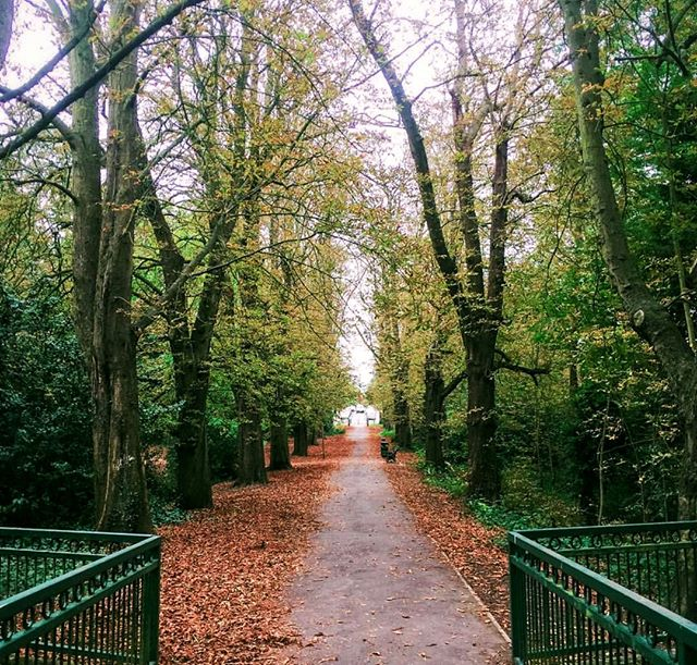 The long walk to the weekend is finally coming to an end! 🛤️ The time for celebrating is almost here! 🙌 #FridayFeeling #IshtahLondon | 📷 @caitlinstanwaywilliams . . . #London #Finchley #Barnet #TurkishRestaurant #MediterraneanFood #turkishfood #londonfood #londonfoodie #foodie #foodies #londongram #londonrestaurants #finchleycentral #londonboroughofbarnet #londonplaces #londontown #londonlife #northlondon #nature #naturegram #naturelover #naturelovers #sunrise #morningmist #naturephotography #goodmorning #forest #morningwalk
