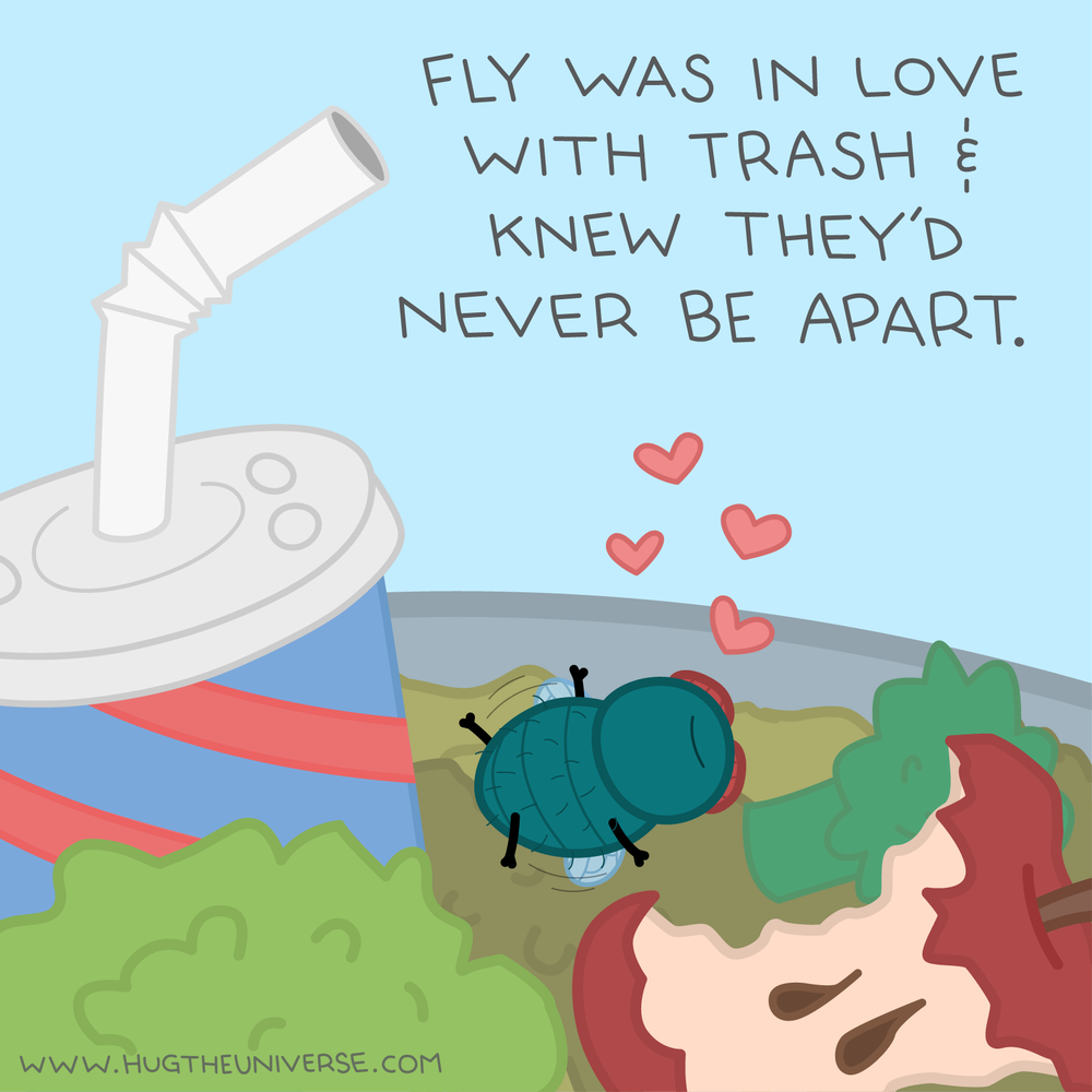 fly-comic-1a.png