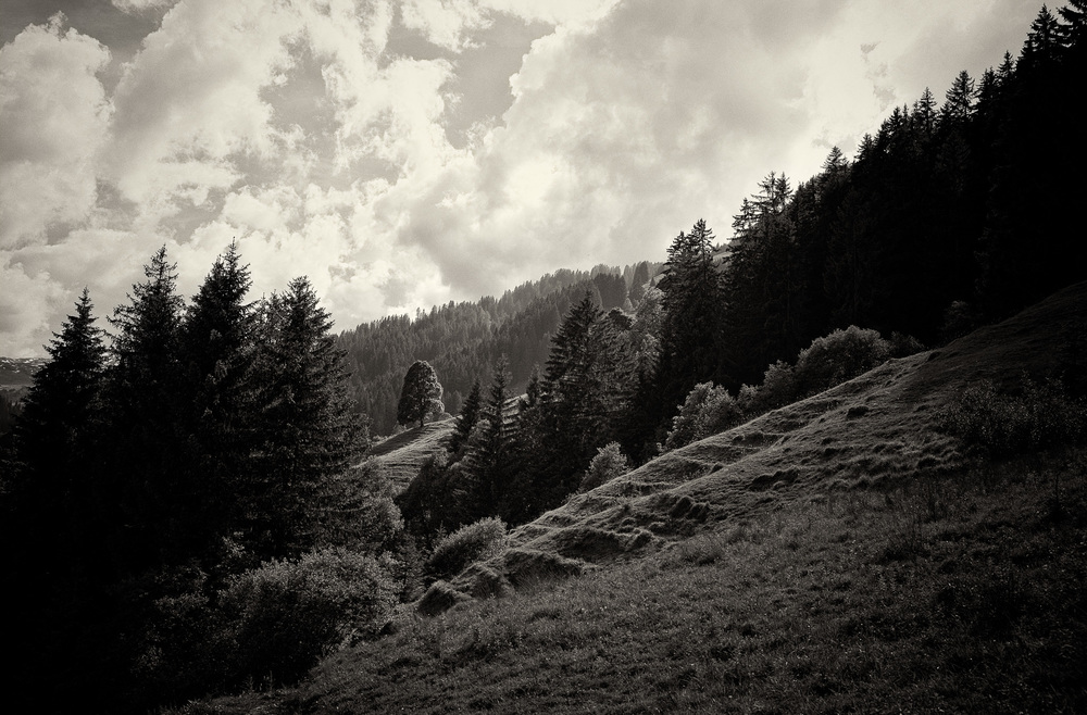 16-Schwarzsee-0120-P-1506-mod.jpg