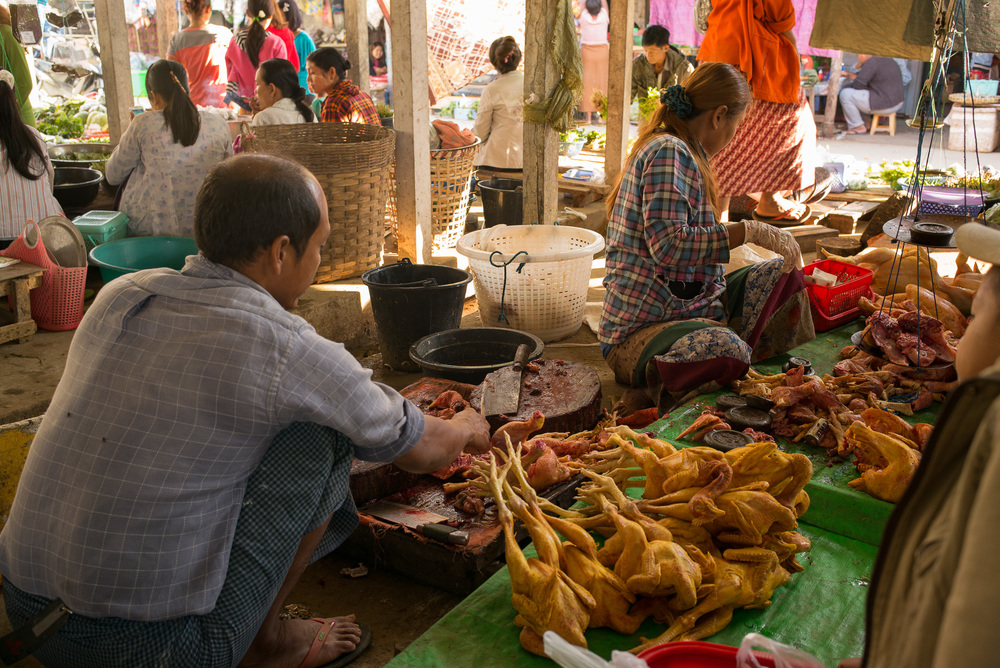 09-Burma-1702-P-1412.jpg