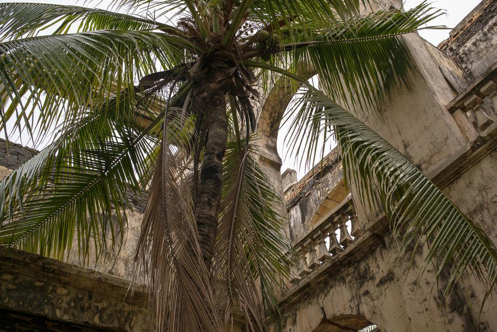 17-Madagaskar-1114-P-1611.jpg