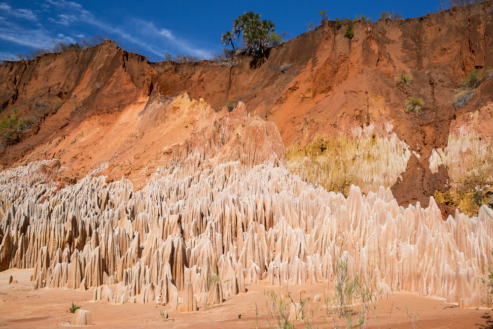 42-Madagaskar-0898-P-1611.jpg