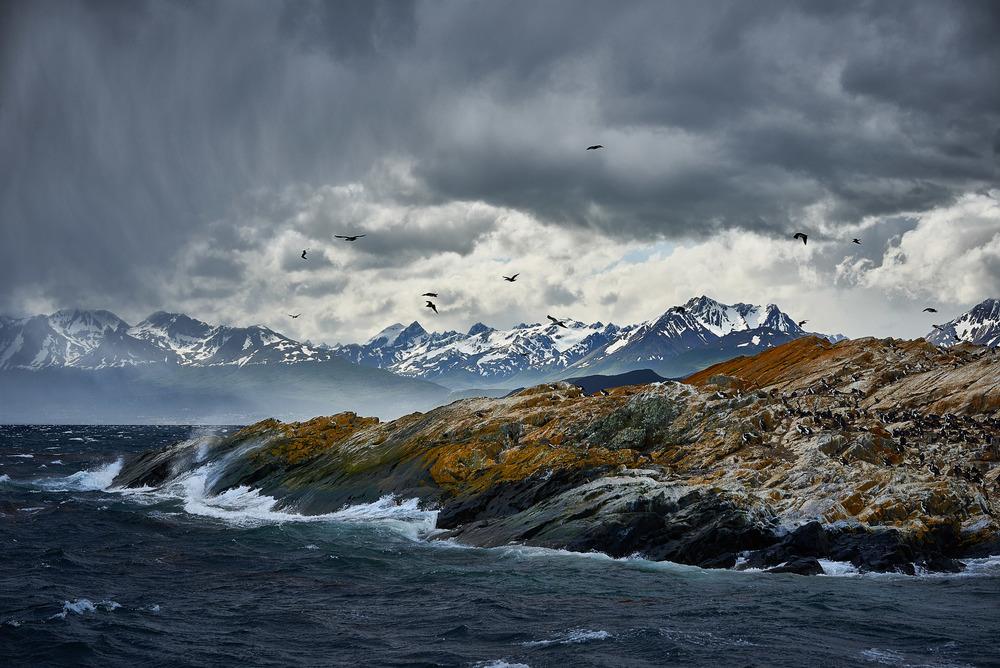 Sven-Stork---Ushuaia Ocean.jpg