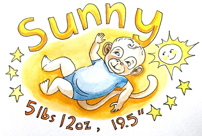 Sunny Monkey copy.jpg