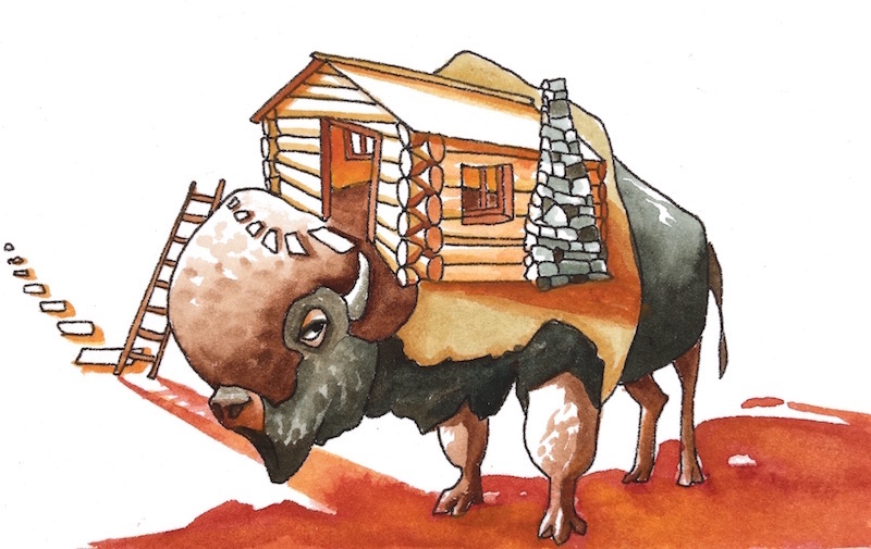 """Bison's Cabin - The mountains outside of Bison's place were literally calling, which is romantic on a poster but pretty aggravating in person."""""""