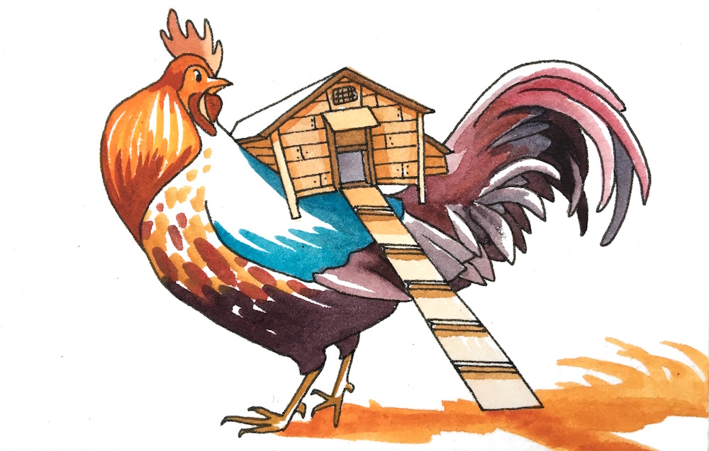 """Rooster's Roost - """"Where's the bathroom? Are you supposed to poop in the straw?"""""""