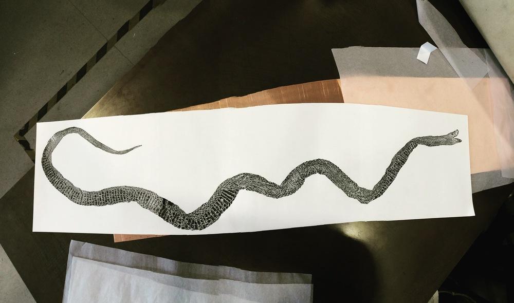 Monoprint Corn snake