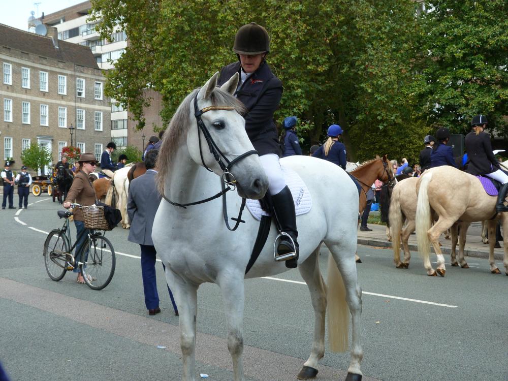 Horsemans2.JPG