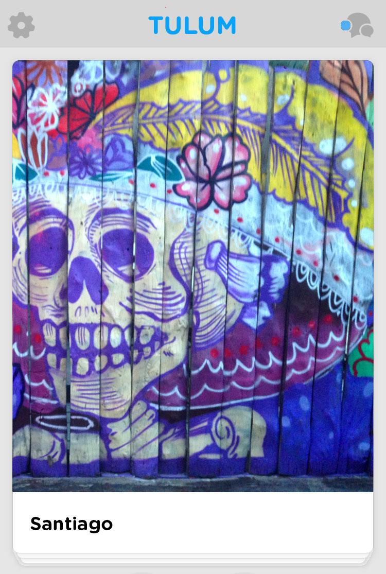 Tulum wall mural skull