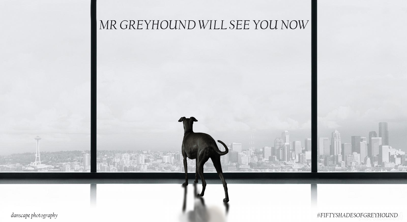 Mr Greyhound will see you now.