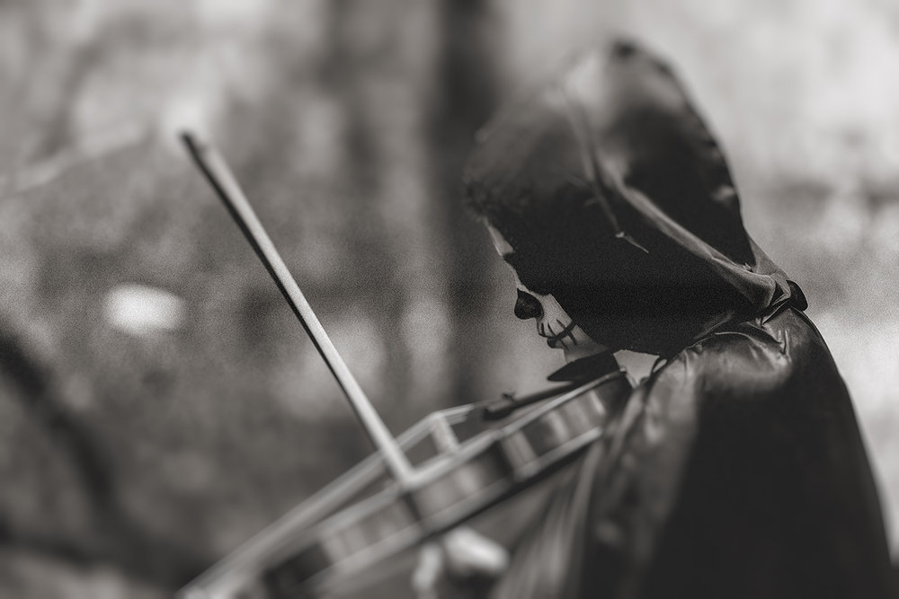 horror-photography-skeleton-graveyard-violin (2).jpg