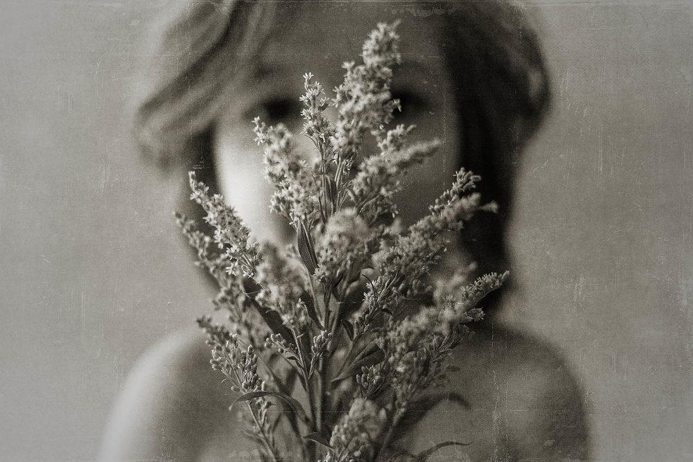 wildflowers-laura-short