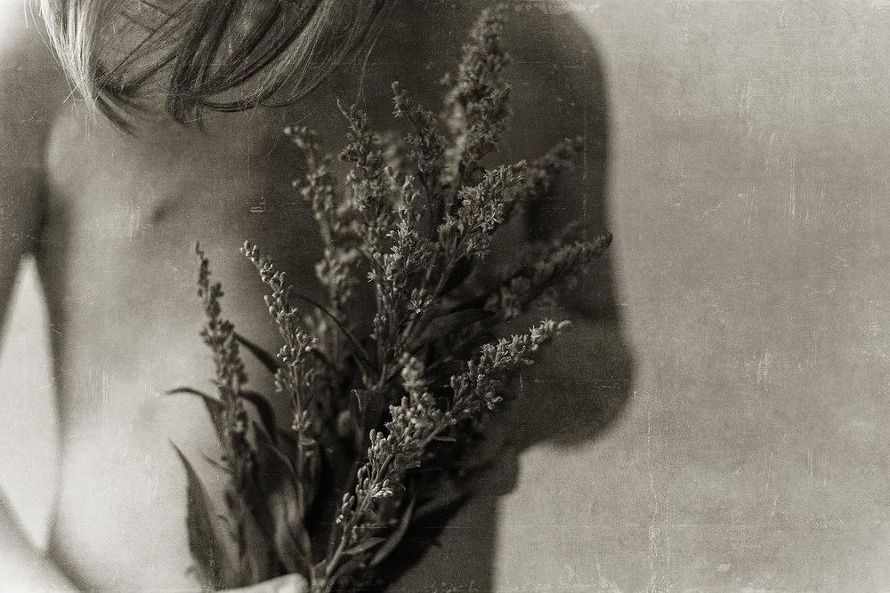 wildflowers-fine-art-denville