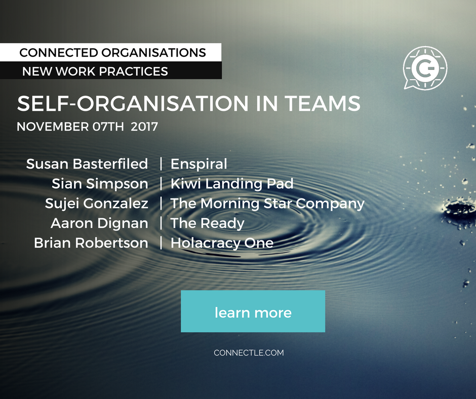 Self-Organisation in Teams
