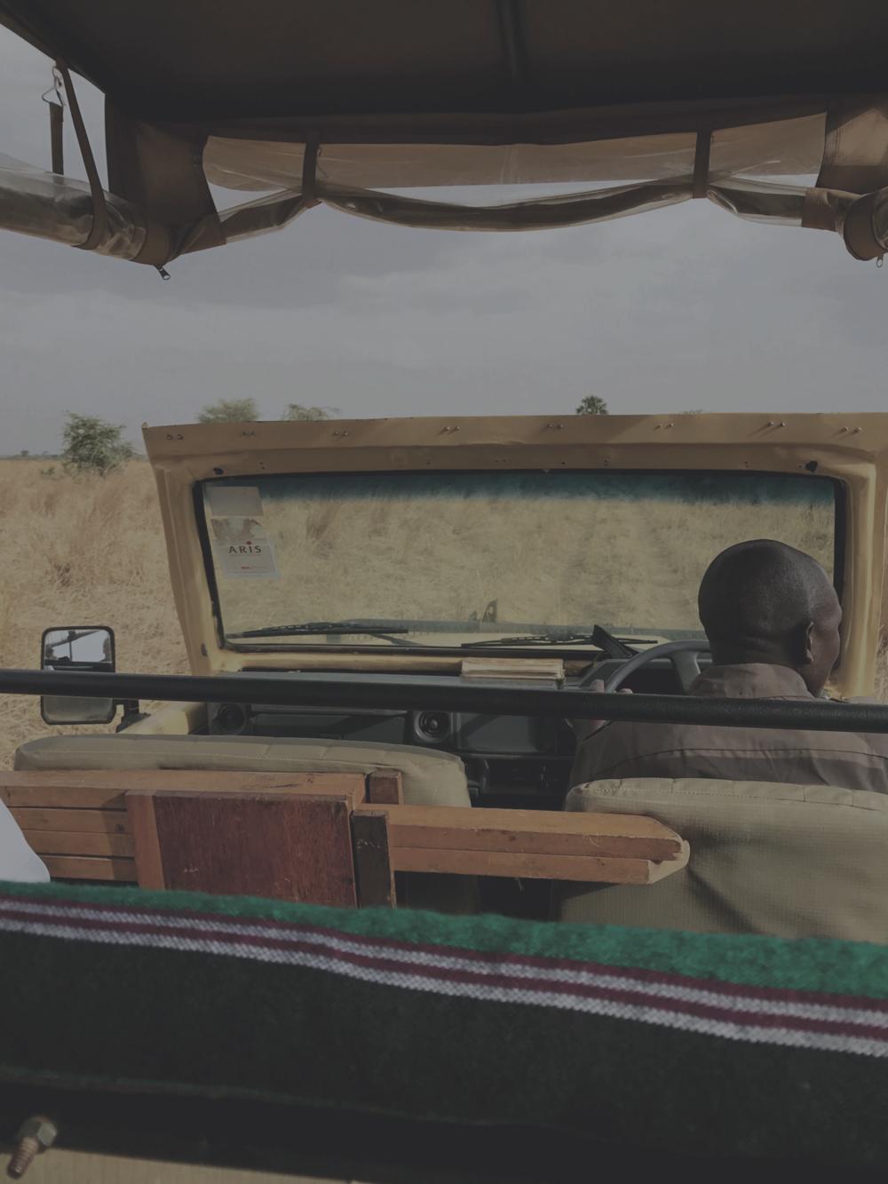 Uganda Safari2.png