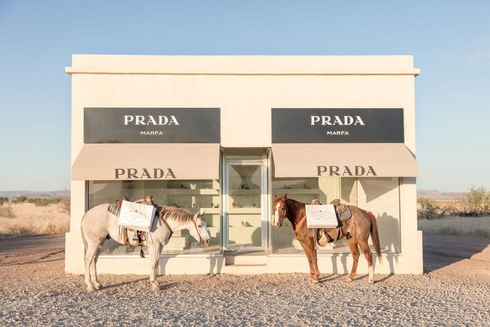 TWO HORSES,  PRADA MARFA