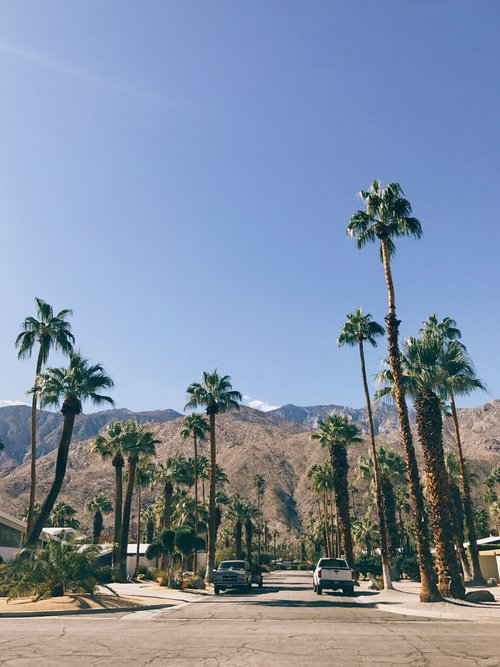 Vlog : Palm Springs + Thoughts on Designer Vaca - For the past two years, I've chosen this particular conference because of how much it shapes you into a better business person and how it pulls you completely out of your comfort zone to learn more.