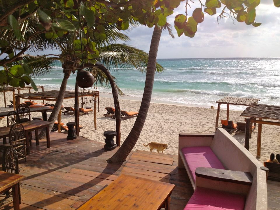 Amansala in Tulum, Mexico offers runs along the beach and candlelit yoga