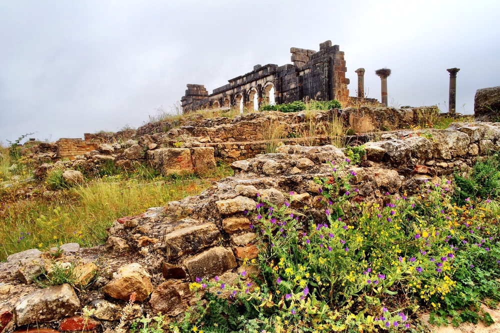 The ruins of the Roman city of Volubilis can be paired with an excursion to Meknès