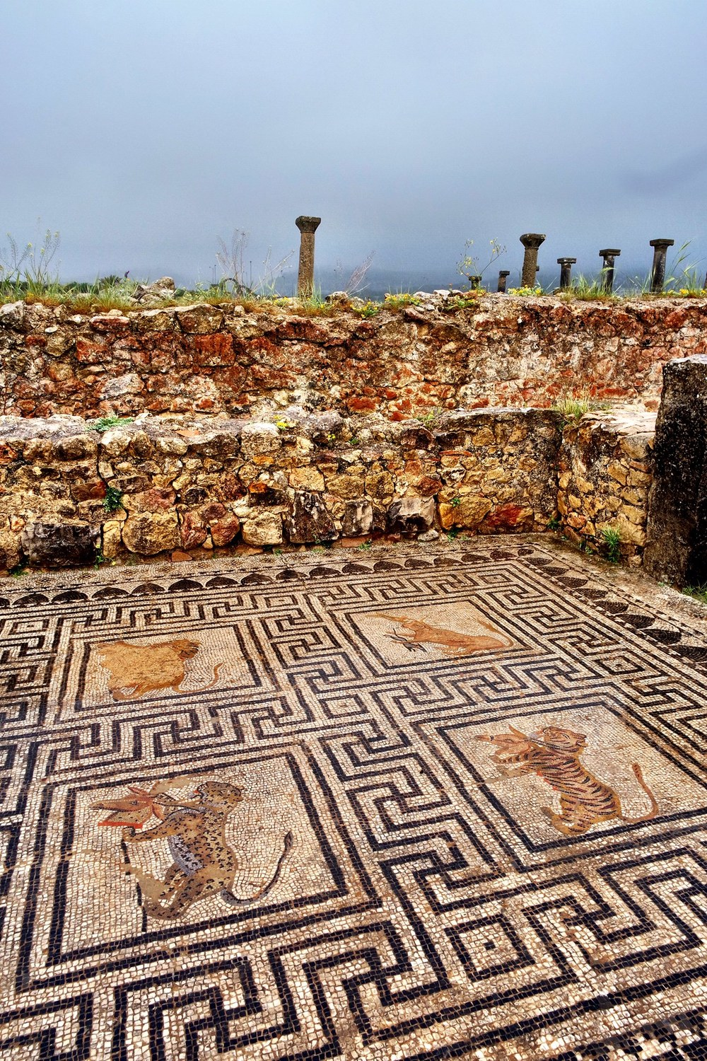 Many of the mosaics of Volubilis are in surprisingly good shape