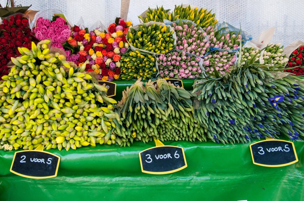 The Janskerkhof flower market is the best part about Utrecht, according to Morgan
