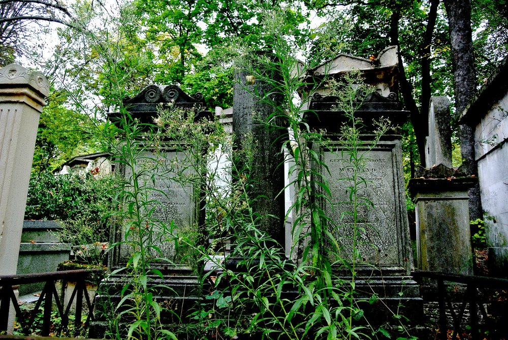 Think of Père Lachaise Cemetery as a large park — that just so happens to have a bunch of dead people buried in it
