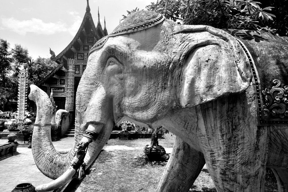 Two stone elephants line the pathway to the viharn, the main temple building
