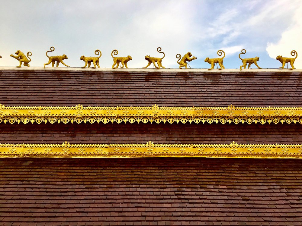 Monkeys line the sala roof