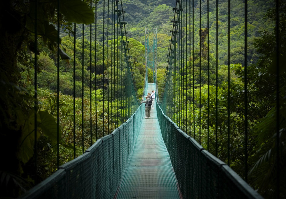 The Sky Walk in the Monteverde cloud forest looks like it's only for the brave