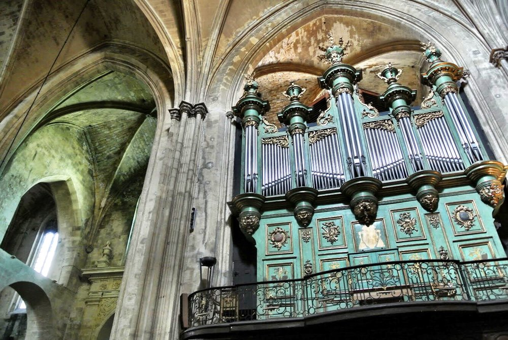 There's a real organ — and a fake one added for the sake of symmetry