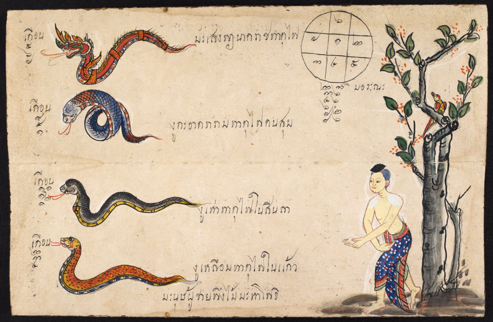 According to the Thai zodiac, people born in the year of the snake are deep thinkers, though they can be vain about their good looks