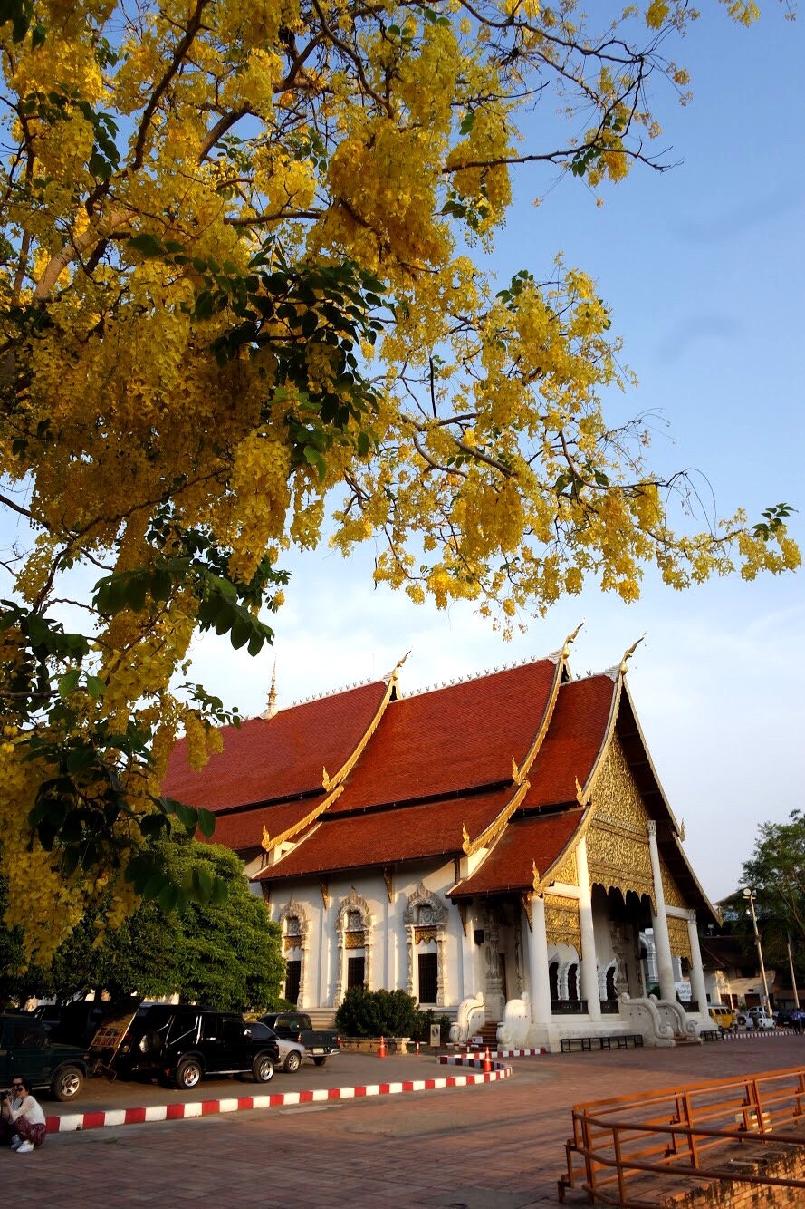 Women can go into all the buidlings on the grounds of Wat Chedi Luang, except for the one that houses the City Pillar