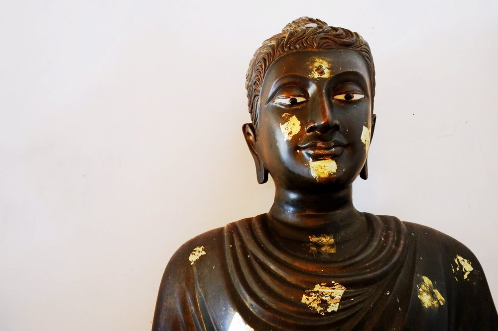 The vipassana meditation technique was developed by a couple of Buddhist monks