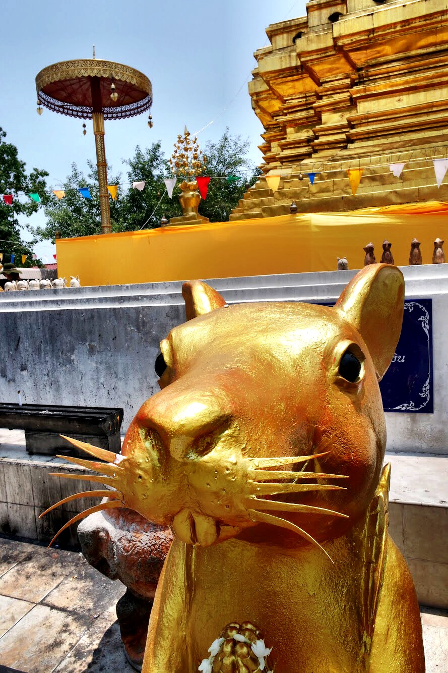 Rats! You'll see lots of depictions of them at Wat Chom Thong