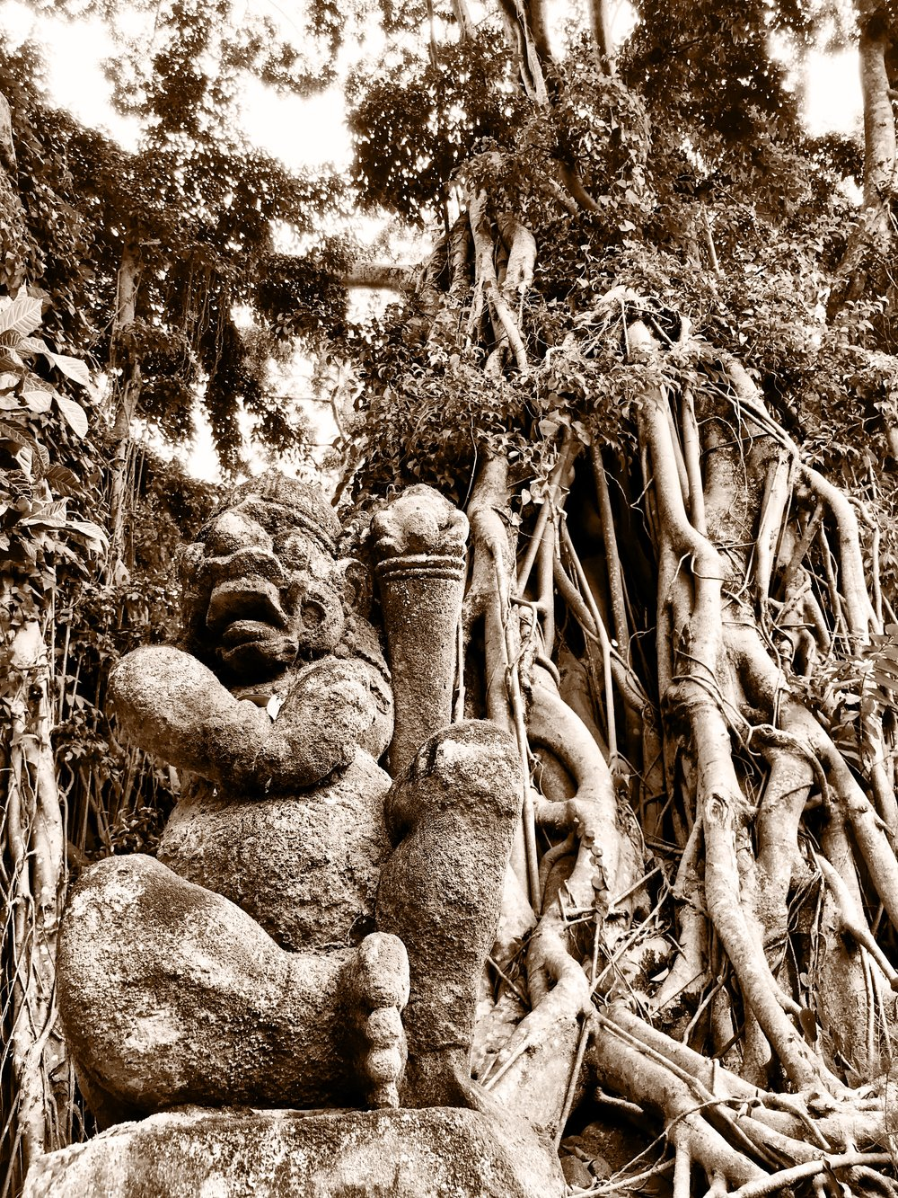 The gnarled roots of banyans pair nicely with demonic depictions