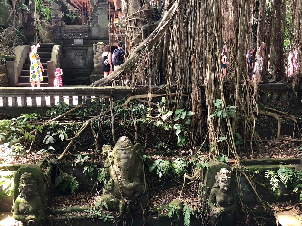 The setting, with banyan roots, bizarre statues, lush foliage and wild monkeys, is quite epic