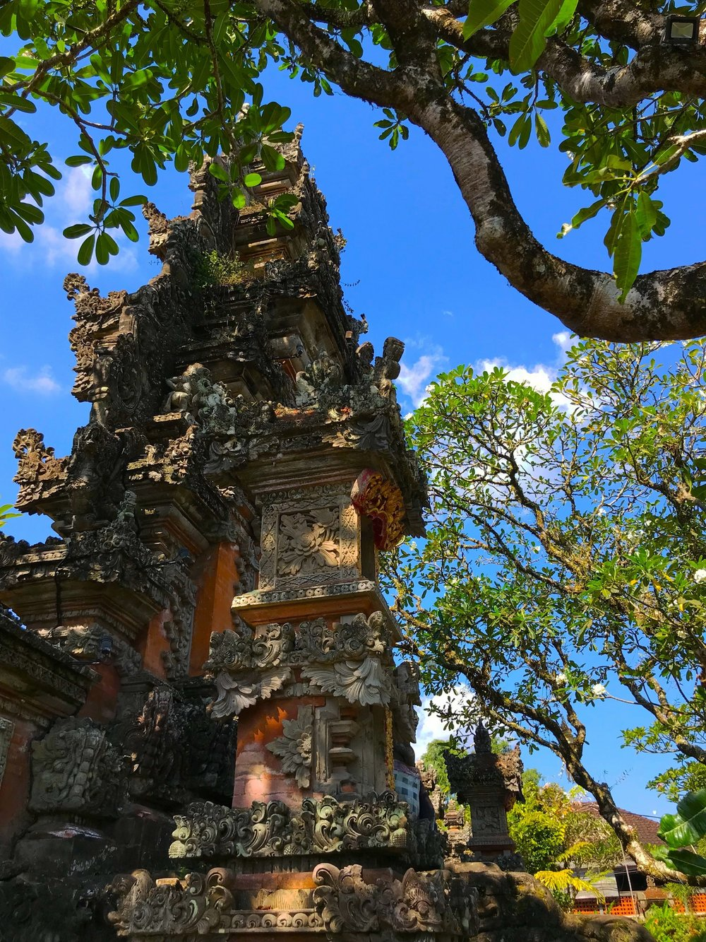 The Saraswati Temple in Ubud