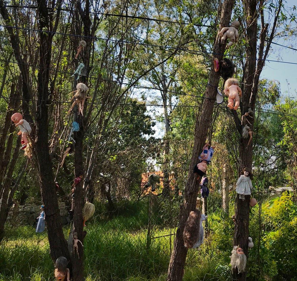 deaddollstrees3.JPG