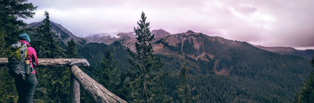 Spray Park Trail in Mt. Rainier National Park