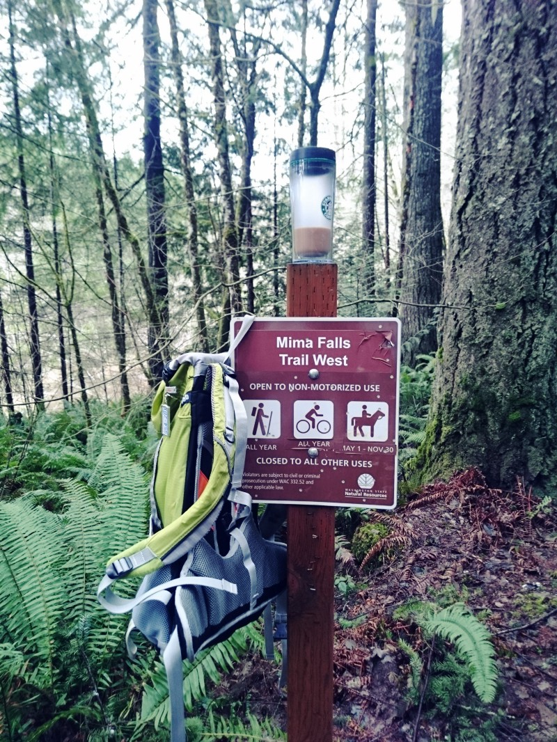Mima Falls Trail in Capitol State Forest