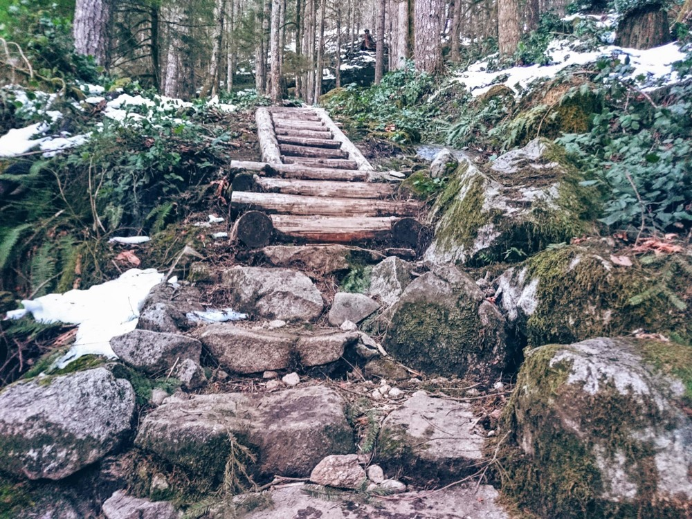 Roughly the halfway point. The trail was snowy the rest of the way above these stairs.