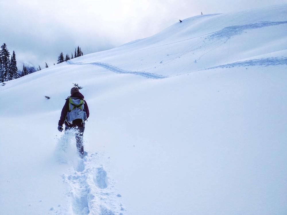 Making way through untouched snow